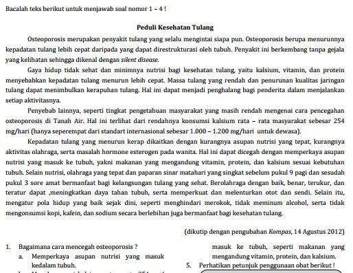 Kumpulan Soal Sukses UN SD Bahasa Indonesia Paket 4 dan Jawaban